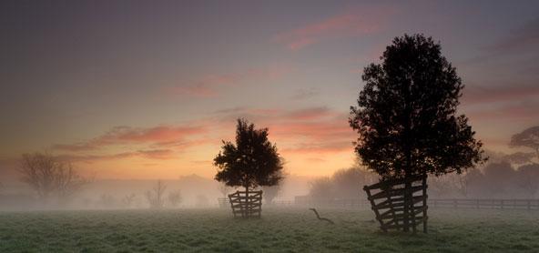Os Jardins Perdidos de Heligan